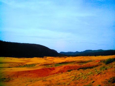 The sand dunes.