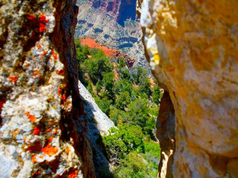 Looking down into the canyon from a crack between two rocks.