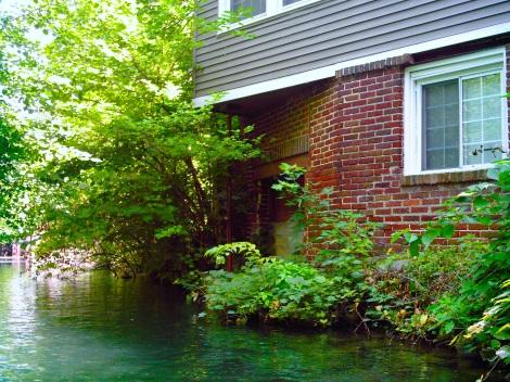 My favorite house. Sooooo close to the water..