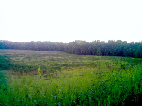 Paul wants to make this area a place for deer, antelope, and buffalo to roam.